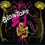 "The Blowtops ""Insected Mind"" available on Vinyl LP or CD."